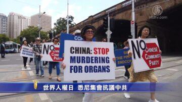 世界人权日 悉尼集会抗议中共
