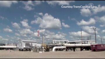 专家:取消美加输油管未有利环境和经济
