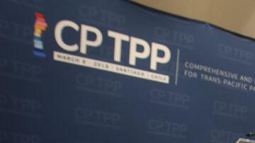 【禁聞】兩岸爭相申請加入CPTPP  雙方勝算幾何