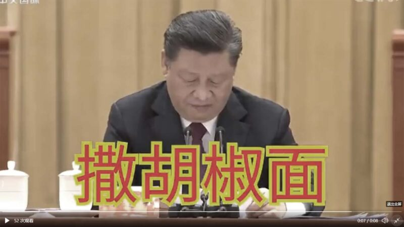"""习近平扶贫讲话 盯稿3秒读出""""撒胡椒面""""(视频)"""