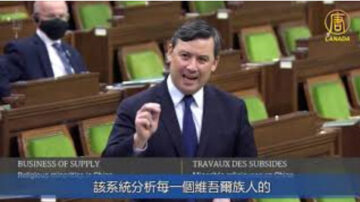 加保守党吁下议院宣布中共在新疆实施种族灭绝