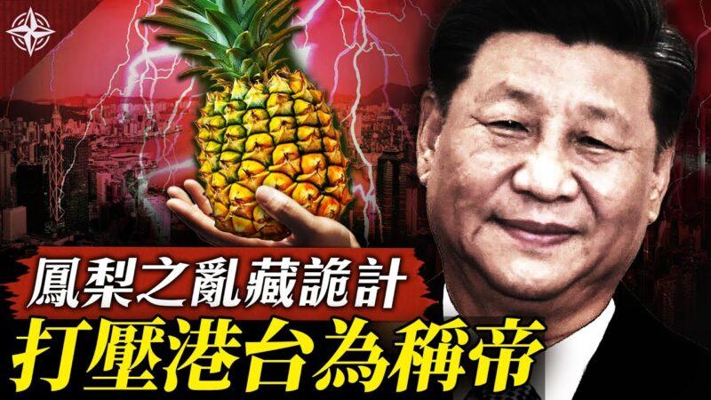 【十字路口】中國禁台灣鳳梨 暗藏統戰三部曲