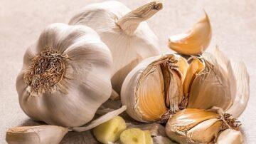 端午吃好蒜 「蒜蒜」哪幾種不能入選?