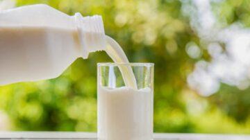 牛奶補鈣效果比豆漿強 低脂、全脂哪個最好?