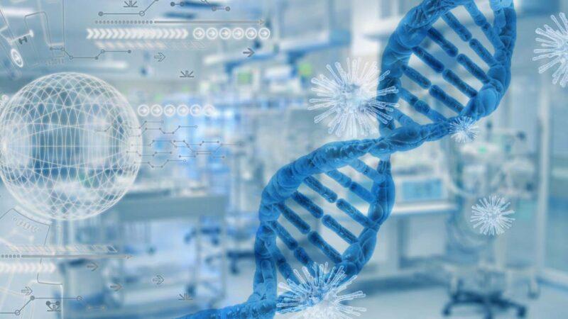 美NIH应中方要求删除的病毒序列 部分已被恢复