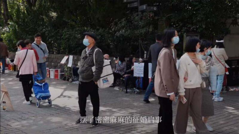 """上海响应三胎 拉来苏州剩女推""""配种式""""征婚"""