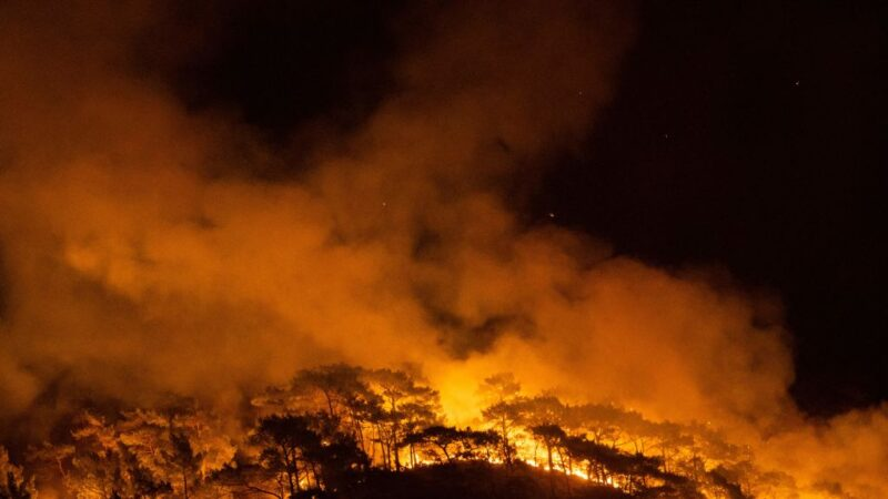 土耳其逾百起野火升至8死 热浪席卷南欧酿灾情