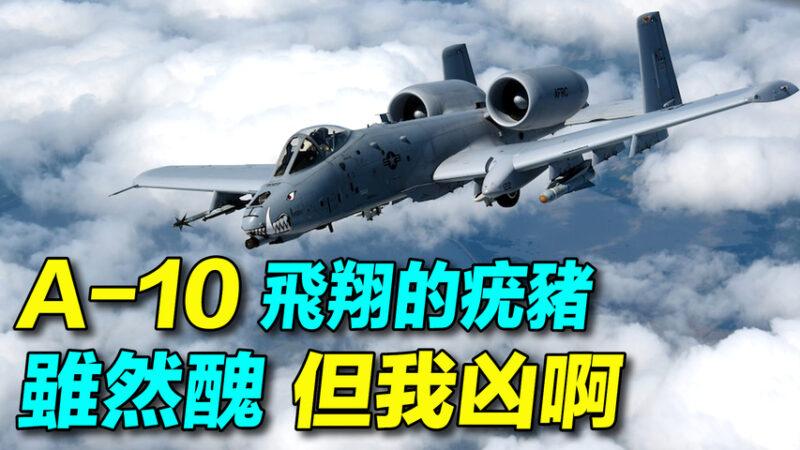 【探索時分】美軍A-10攻擊機:雖然醜但很凶