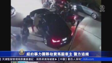 纽约暴力团伙劫宝马殴车主 警方追缉
