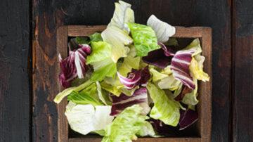 冷藏生菜有妙方 一連5天都吃得到清脆蔬食