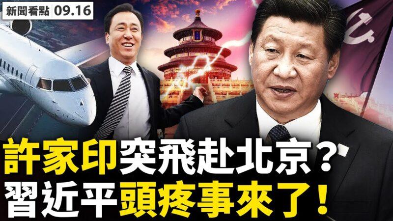 赵薇真人露面网友热捧?!许家印突进京习为难?