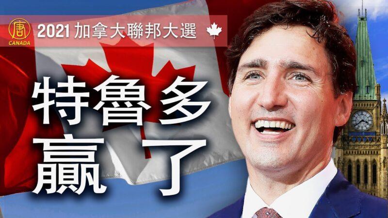 加拿大联邦大选 自由党领袖特鲁多 获得连任