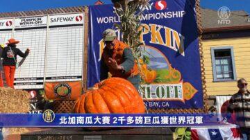 北加南瓜大賽 2千多磅巨瓜獲世界冠軍