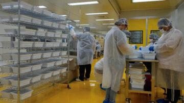 【最新疫情】台湾时隔193天再现零确诊零死亡 日本拼年底上市抗病毒口服药