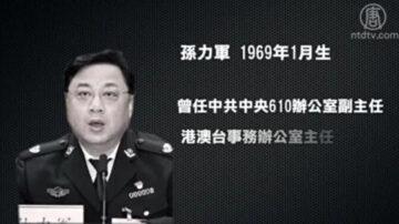 王友群:公安部長趙克志四談孫力軍案釋何信息