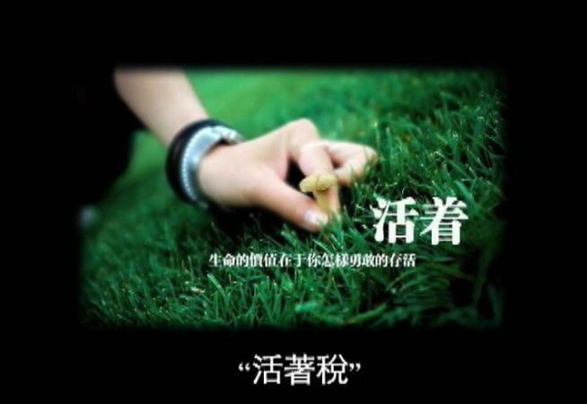 大陆新闻解讀(71)之新闻联播