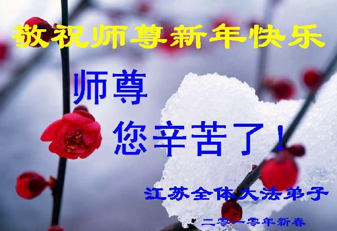 賀卡集錦:大陸法輪功學員恭祝創始人新年好(一)