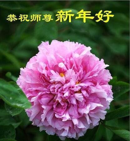 大陸法輪功學員恭祝創始人新年快樂(三)