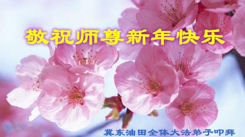 大陸各行業法輪功學員恭祝創始人新年快樂(二)
