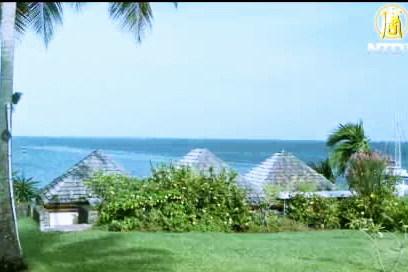 馬蒂尼克島——花的島嶼(廣告)