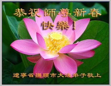 大陆法輪功學員恭祝創始人新年快乐(十七,240地)
