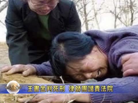 王友群:王书金死了 谁是杀害聂树斌的真凶?