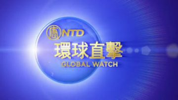 華人社區活躍人士:享受中國文化精髓