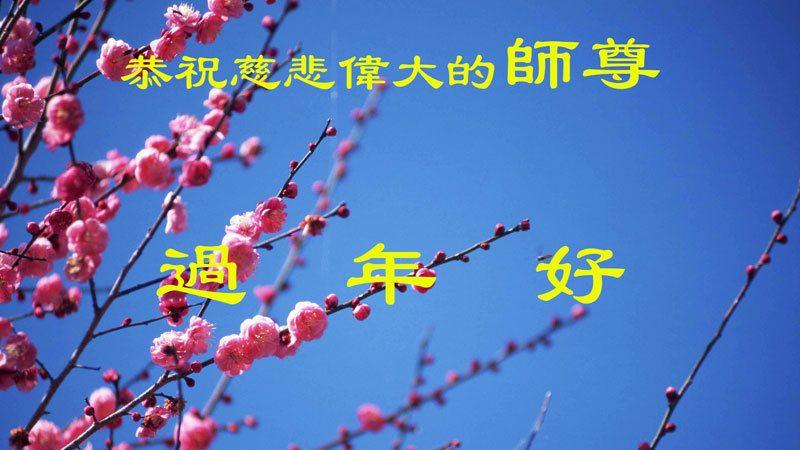 大陸教育系統大法弟子恭祝李洪志大師過年好(八)
