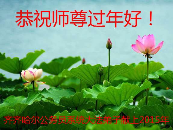 大陸各行業大法弟子恭祝李洪志大師過年好(十)