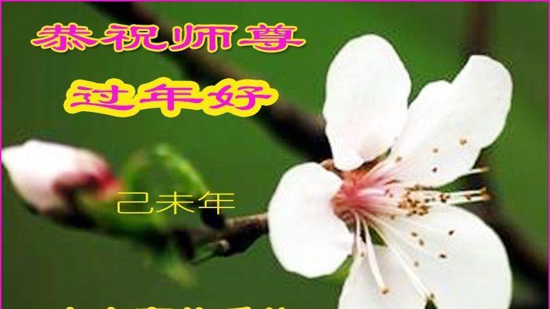 大陸各行業大法弟子恭祝李洪志大師過年好(十一)