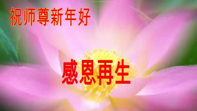 遼寧大法弟子恭祝李洪志大師過年好(三)