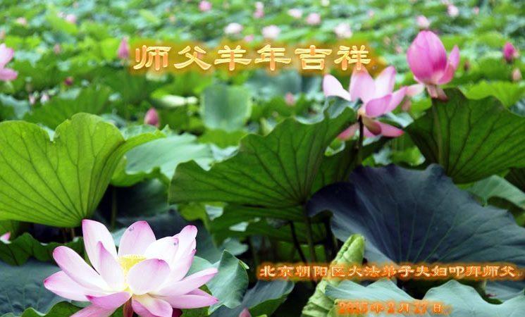 北京大法弟子恭祝李洪志大師過年好(六)