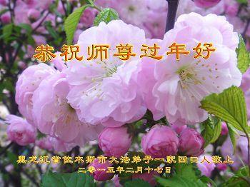 佳木斯大法弟子恭祝李洪志大師過年好