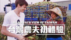 郝毅博台灣做農夫 收穫香甜水果玉米