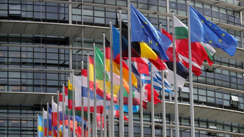 歐議會前 烈日下 法輪功學員籲關注活摘罪惡