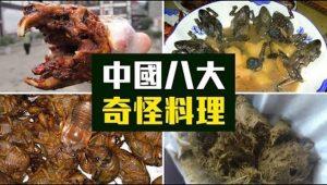 """你有胆吃吗?老外盘点中国八大奇怪料理 不止""""暗黑"""""""