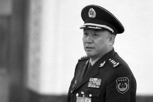 原武警司令王建平落馬內情:鄰居從一塊菜地看出危機徵兆