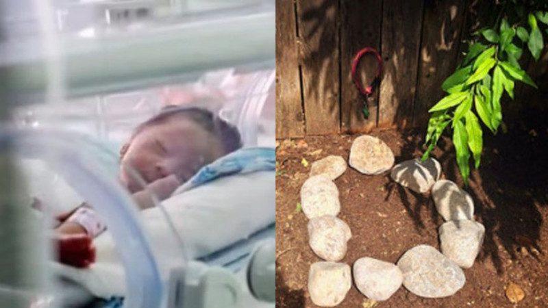 妈妈早产生下死胎,外婆将她埋在后院;父亲回来后,从土中挖出她,竟然活着