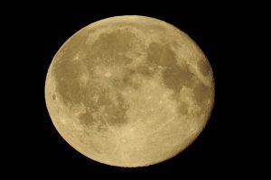 月球上盖庙? 欧洲太空总署公布最新计划
