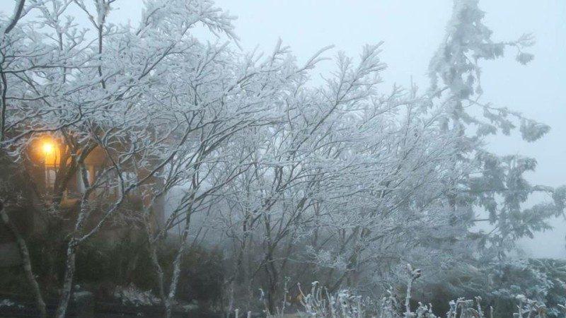 寒流来袭上山追雪 预防高山症3妙方