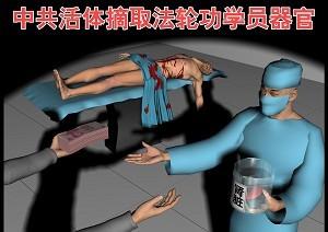 陈思敏:环球时报专访证明黄洁夫说谎