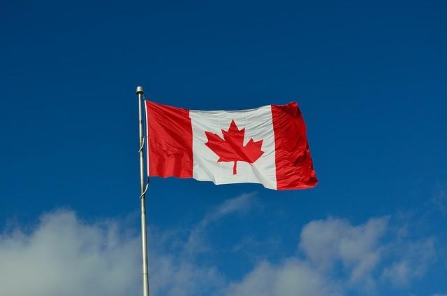 去年日均3名中国人 在加拿大申请政治庇护