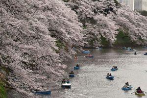 日本年超中國千萬遊客 旅日學者透原因