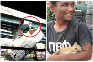 泰爱猫!泰男冒生命危险卡车顶救猫