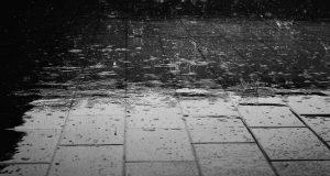 大多倫多地區今天將有大雨 環境部發特別天氣聲明