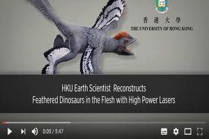 生存在地球1.6亿年 科学家发现近鸟龙之谜