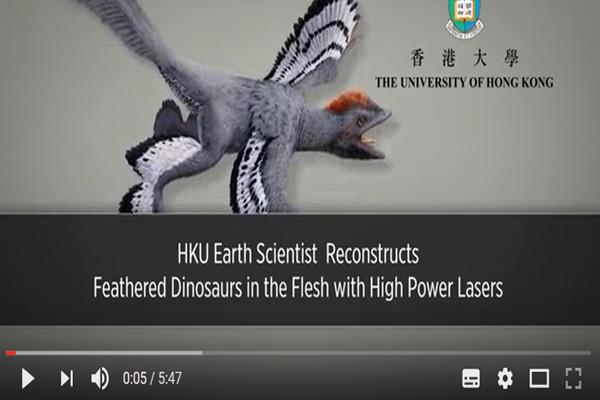 生存在地球1.6億年 科學家發現近鳥龍之謎
