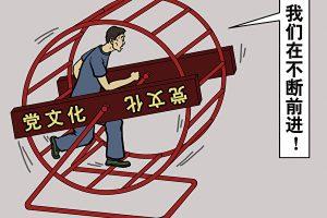 """颜丹:洋学生""""来华学习政治是个人选择"""""""