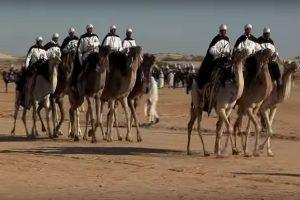 豪奢舉世聞名 沙特砸800億美元辦駱駝節