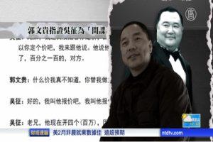 楊瀾丈夫吳征捲入馬建案 被曝是中共職業間諜